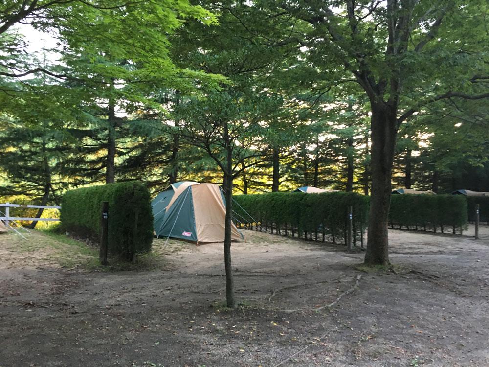 ティーピーキャンプ場